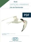 Guía de Aves acuáticas en la Bahía de Santander