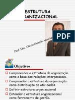 estrutorganizacional