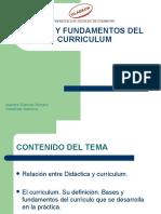 Bases y Fundamentos Del Curriculum 13 de Mayo