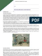 Seguridad Electrica en Areas de Uso Medico