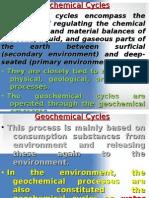 Geochemical Cycles