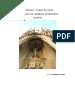 Caderno de Subsídios Barcelona - Capacitação Cultura