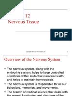 Chapter 12 - Nervous Tissue