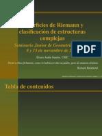Superficies de Riemann