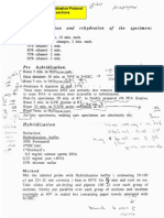 In Situ Hybridization Protocol