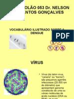 Vocabulário Ilustrado sobre a Dengue