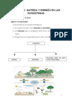 Unidad 10 Materia y Energia en Los Ecosistemas