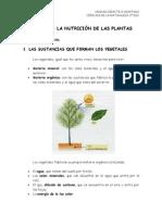 u06_la_nutricion_de_las_plantas