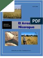 Cadena de Arroz en Nicaragua