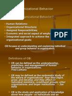 Organizational Behavior-1 (1)
