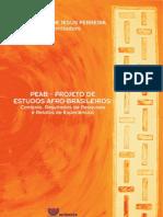 2008 PEAB Projeto Estudos Afro Brasileiros. Organizadora