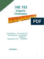 10800604_term paper