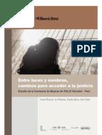 Entre luces y sombras, caminos para acceder a la justicia