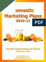Domestic Marketing Plans 2010-11