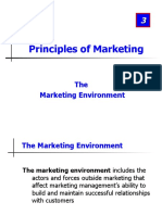3. Marketing Environment