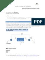 E1RPP1 Sistema de Purificacion