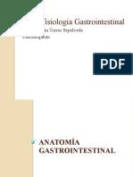 Morfofisiología Gastrointestinal