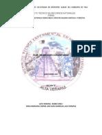 Plan de Servicio Juan Gomez Seccion B