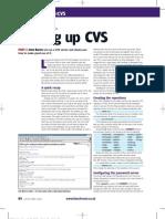 CVS Servers