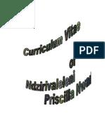 Curriculum Vitae NP