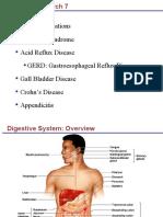 Dig System 6