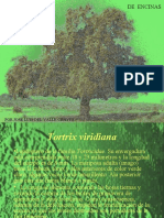 PMF EV2