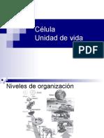 Microscopios Celulas y Organelos 1º medio A