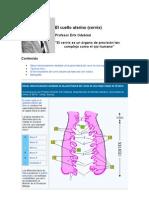 El funcionamiento del cuello uterino durante las fases del ciclo ovárico