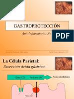 gastroproteccion