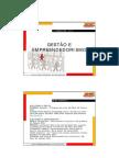 Gestao e Empreendedorismo - Slides 1 a 18