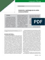 Anatomia y Patologia de La Union Craneovertebral