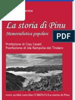 La storia di Pinu - Poster