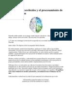 Hemisferios_cerebrales_y_el_procesamiento_de_la_información