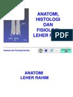 Anatomi Dan Fisiologi Serviks Dr Anggi
