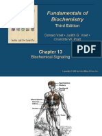 Ch13 Mea Short Biochemistry (Protein and Nucleic Acid)