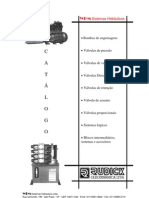RudickOleoDinamica[1]