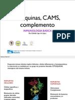 Citoquinas CAMS, Complemento