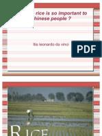 Cinese People Rice
