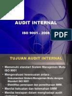 Audit Internal (3)