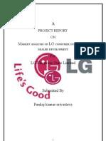 LG summer project