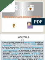 Moleculas Biologic As (Antonio Rodas)