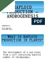 androgenesis