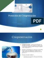 Protocolos de Criogenización y Costos