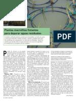Plantas Macrofitas Flotantes Para Depurar Aguas Residuales