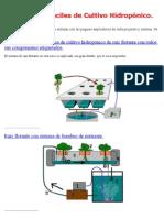 Sistemas Fáciles de Cultivo Hidropónico