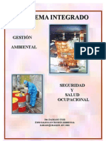 Sistema Integrado De Gestion Ambiental, Seguridad Y Salud Ocupacional
