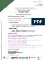 Torneo Inter Escuelas Ciudad de Pinto 2011 Caracteristicas Reducidas