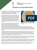 (Ya)Bacteria Bio-Wastes Plastic