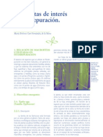 Manual de Fito Depuración, Filtros de Nacrofitas en Flotación, Capítulos 7