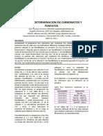 Carbonatos y Fosfatos Informe 0956956